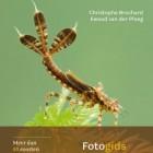 Larven van libellen - Fotogids van Brochard & Van der Ploeg