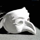 Theaterrecensie: Karin Bloemen over de Carré diva