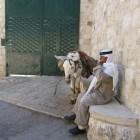 Boekrecensie: De andere kant van Israël - Susan Nathan