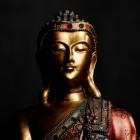Prana healing en het etherische web